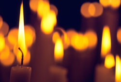 Dedicate a light to a loved one at The Rosemary Foundation's Lights of Remembrance service
